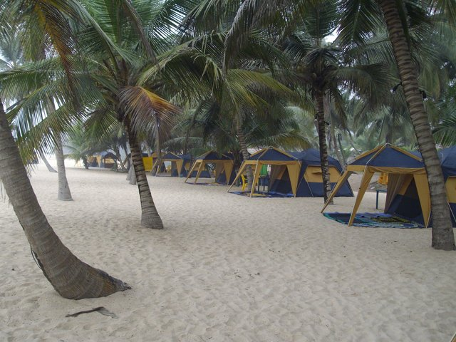 La-Champagne-Tropicana-Beach-Resort
